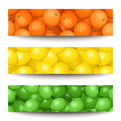 Three vector banners with citrus fruits.