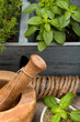 Fresh herbs with mortar and pestle. Basil, oregano and thyme.