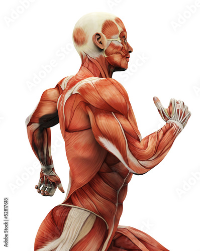 muscle man running picture