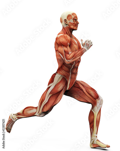 muscle man running