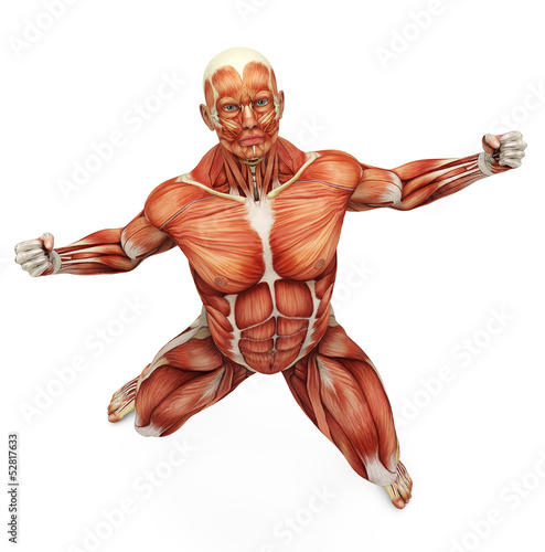 muscle man strong pose bird eye view
