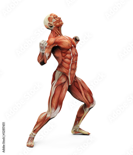 muscle man strong pose