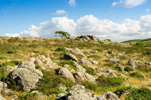 Sardegna, Gerrei