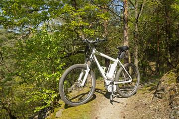 e-bike, pedelec, fahrrad, mountainbike, sommer
