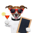 funny cocktail dog