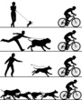 Dogs and cyclist