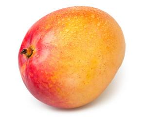 mango one wet