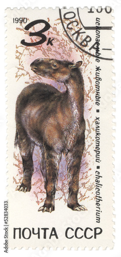 Dinosaur Chalicotherium on post stamp