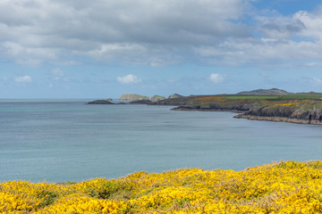 St Brides Bay from Wales Coast Path Pembrokeshire UK