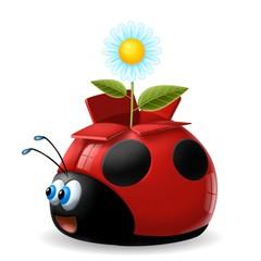coccinella fiore