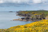 Rugged UK coast Pembrokeshire Wales