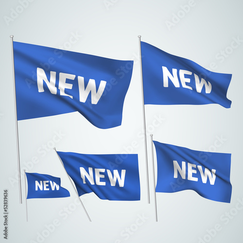 New - blue vector flags