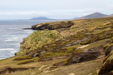 Coastline Falkland Islands