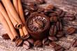 Leckerer Schokotrüffel mit Kaffee und Zimt