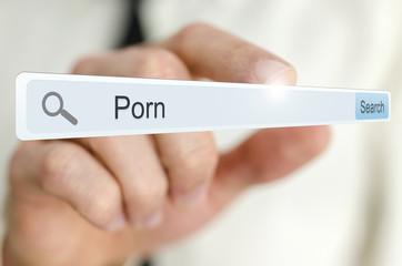 Word Porn written in search bar