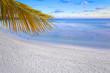 plage des Seychelles au crépuscule