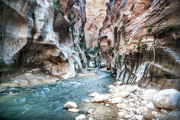 Wadi Hasa creek in Jordan