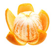 Open orange fruit isolated.