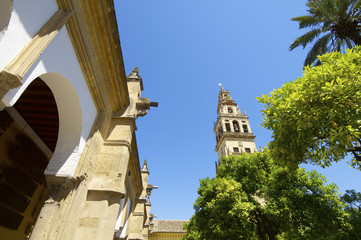 Mosque in Cordoba