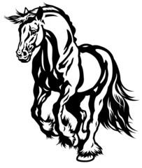 running draft horse black white