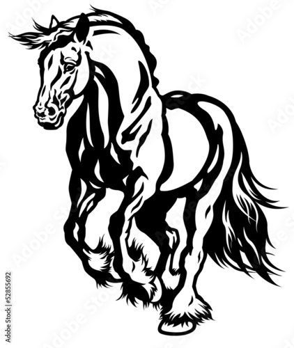 running draft horse black white