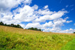 beautiful cloudscape on blue sky over green meadow