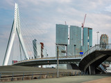 Erasmus bridge and architecture in Rotterdam