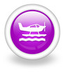 "Violet Icon ""Sea Plane"""
