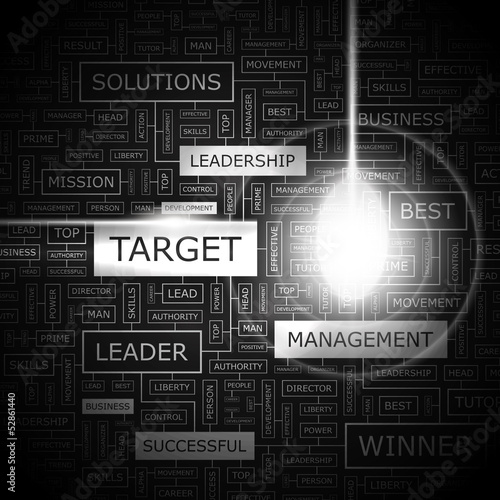 TARGET. Word cloud concept illustration.