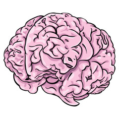 Vector cartoon brain