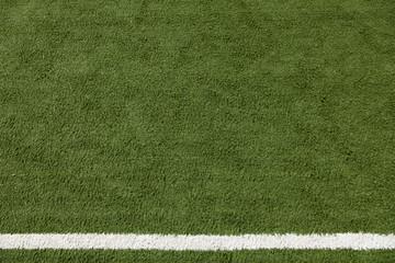Artificial Lawn & White Stripe