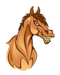 Funny horse head