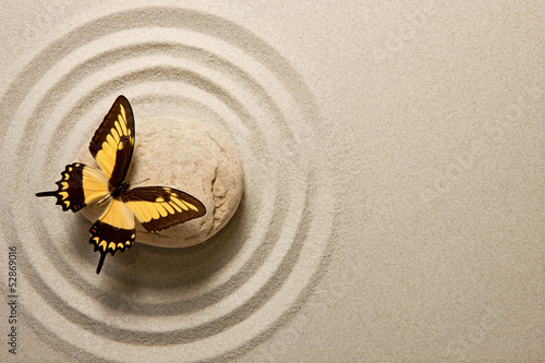 Deurstickers Vlinder Zen stone with butterfly