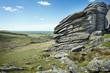 Wild British Landscape