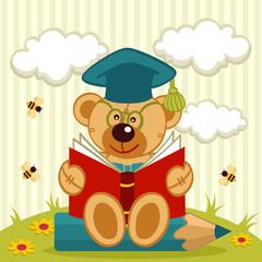 teddy bear professor
