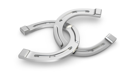 Two silver horseshoes