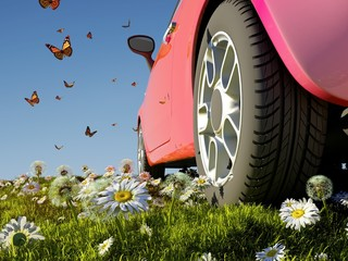 Car and butterflies