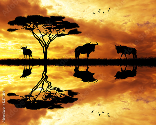 Fototapeten,seilwinde,saeule,afrika,afrikanisch