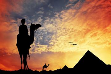 Cairo and sahara