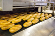Production of bread in factory