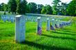 Arlington National Cemetery in Memorial day - 52881073