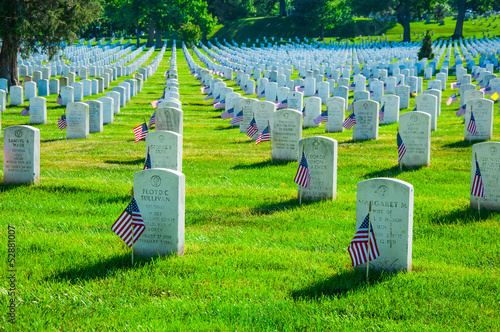 Fotobehang Begraafplaats Arlington National Cemetery in Memorial day