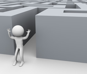 3d successful man and maze