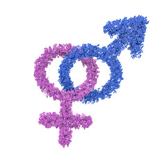 Male female gender symbols intertwined