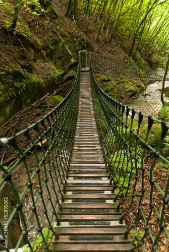 On the Hiking Trail Eifelsteig - 52885862