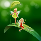Two playful fairies