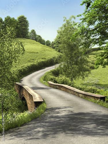 Fototapeta Droga przez zielone łąki
