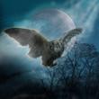 Eule Mond Baum Nebel