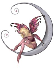 Pretty Pink Moon Fairy