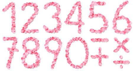 Numeri di petali rosa